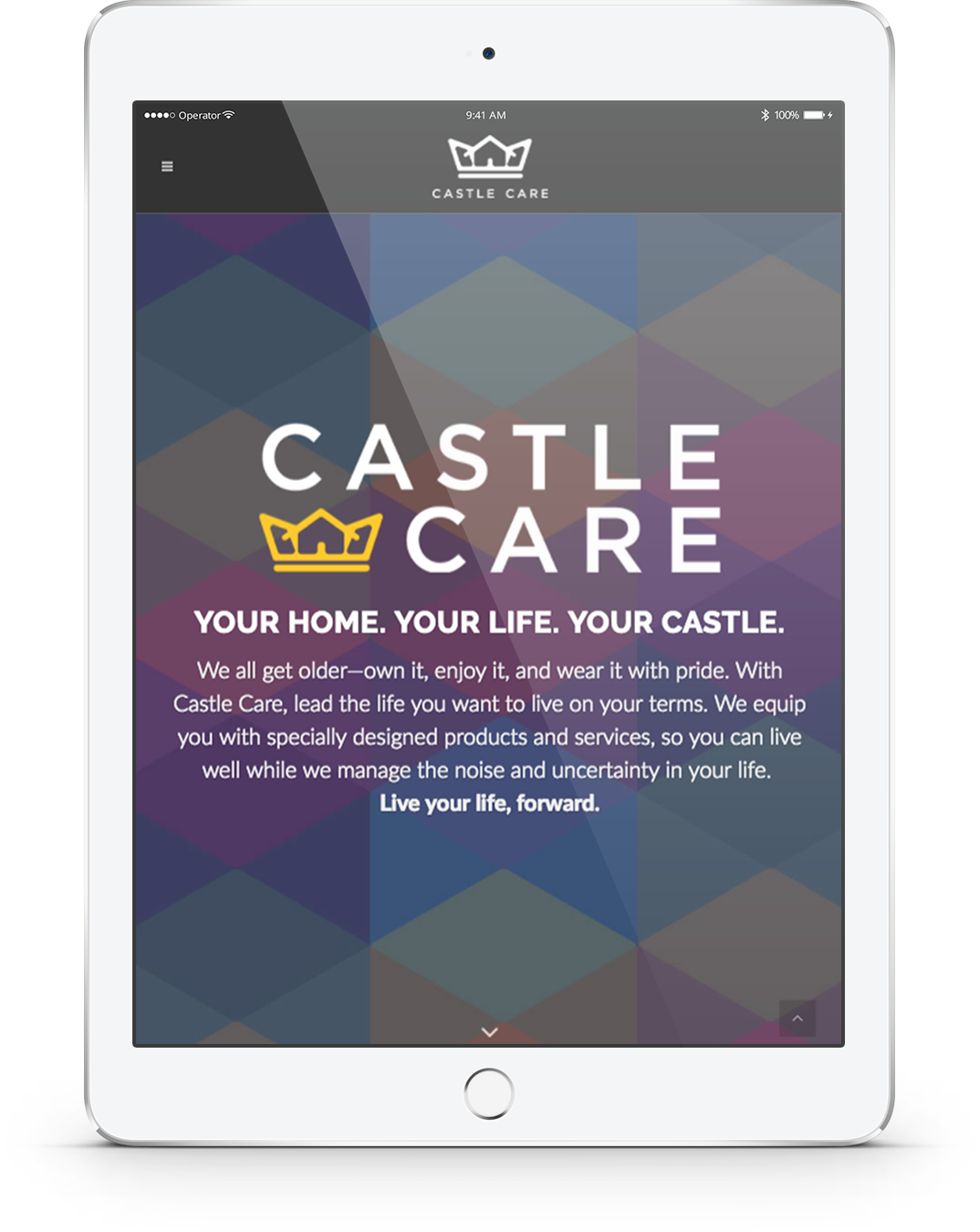 Castle Care iPad rendering